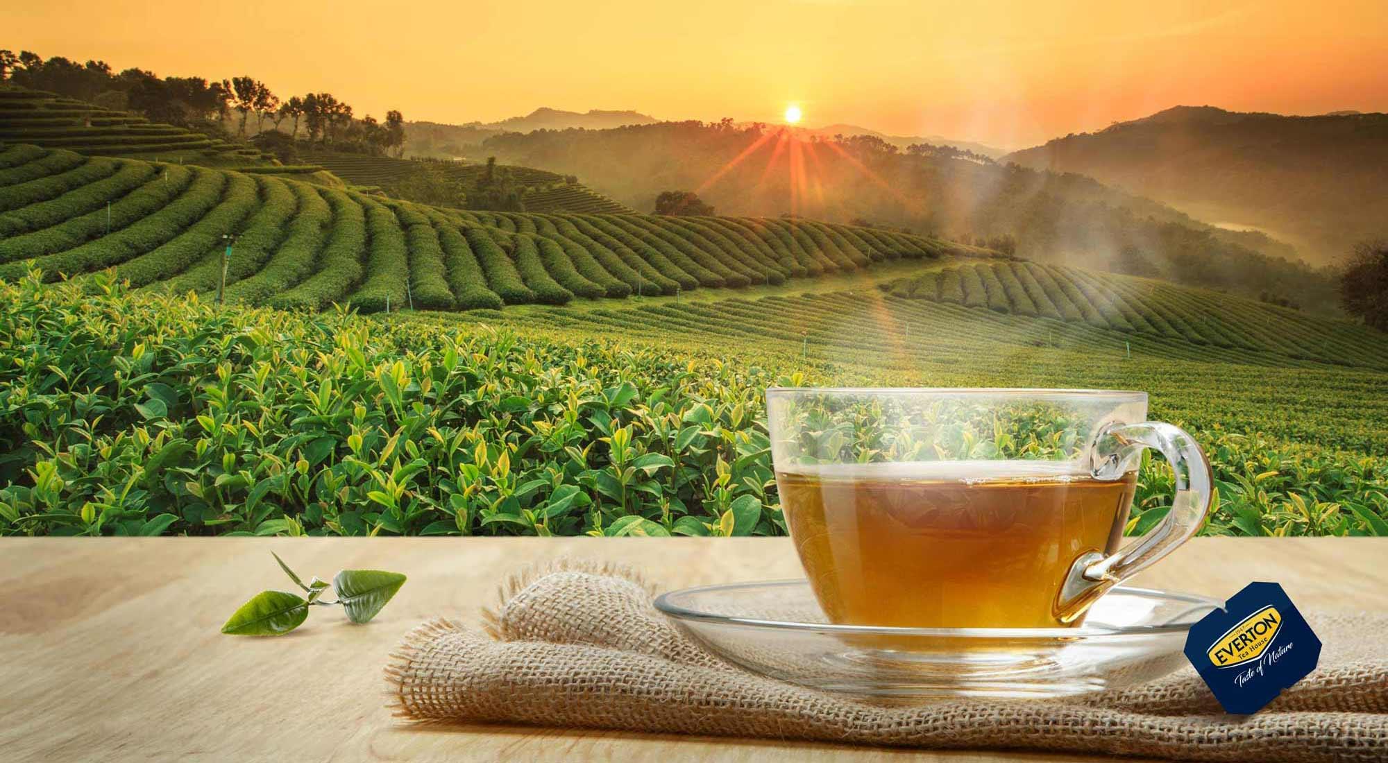 L'ora del tè? Non solo le cinque del pomeriggio